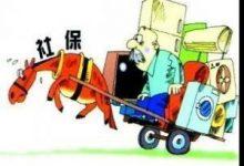 社保专栏--昌平区(全解)
